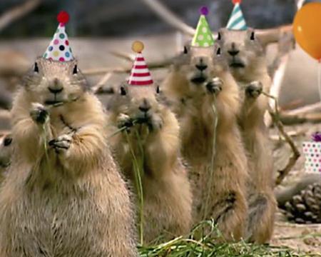 Birthday SmashUps