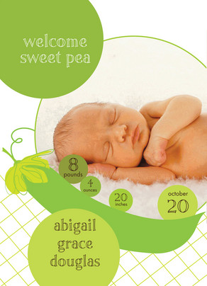 Green Sweet Pea 5x7 Flat Card