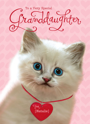 Valentine Granddaughter Kitten 5x7 Folded Card
