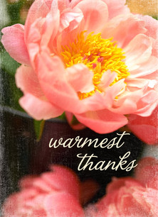 Photo Floral Thank You 3.75x5.25 Folded Card
