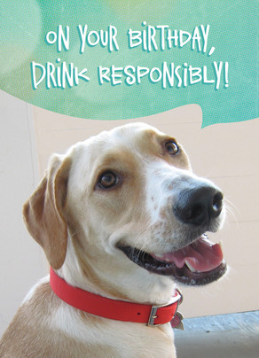Drink Responsibly Photo Card 5x7 Folded Card
