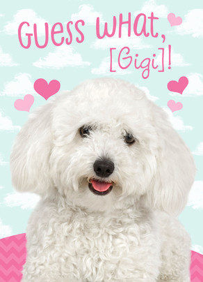 Cute Puppy with Hearts 5x7 Folded Card
